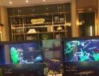 海洋生物展出租活体海狮企鹅展览海洋展价格布置供应商