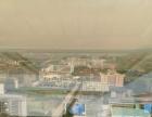 出租市政府旁发展大厦写字楼(已装修)