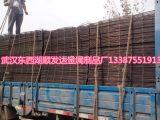 电焊网钢筋网建筑网 护栏网规格齐全