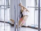 兰州专业流行舞蹈培训 提供住宿