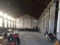民安工业区 700平方一楼标准厂房 便宜租