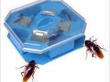 义乌现货 环保型 优质 大号蟑螂捕捉器 捕蟑器 灭蟑器 蟑螂诱捕