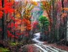 横头山国家森林公园门票/哈尔滨到横头山怎么走?横头山一日游