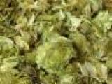 啤酒花原料供应、啤酒花河南、进口啤酒花、啤酒花代理