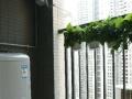 深圳南山科技园附近的豪华单房短租
