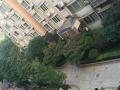 市政府新府华城单身公寓新装修家电齐全 拎包入住