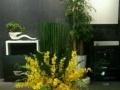 高级仿真花艺、仿真树、绿墙、花墙、室内园艺