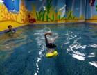 大连小学生学游泳 德国贝贝鲸儿童游泳馆