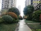 京华城旁品尊国际5室2厅2卫大平层观景房品尊国际