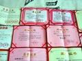 百虎图——桂林市老年书画协会常务理事老画家真迹
