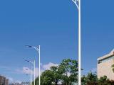 华美鸥厂家直销 5、6米路灯杆 A字臂道路灯 led路灯