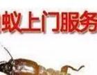 东莞防治白蚁公司,四害消杀,多镇设点