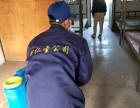 深圳杀虫 除虫公司 灭老鼠 白蚁防治公司 臭虫消杀公司