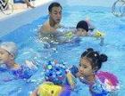 招收游泳学员