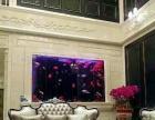 酒店镶嵌式生态鱼缸定制 会所嵌入式鱼缸定制 大型亚