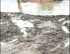 武汉新洲阳逻周边挖泥船出租水路挖掘机出租江南租赁服务