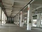 新阳工业区 海沧,新阳工业区 厂房 8000平米