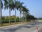 出租高新区科技创新海岸标准厂房地理位置好交通方便