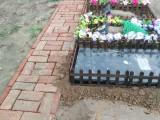 宠物墓地 猫死了处理
