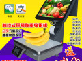 收银秤一体机双屏电子秤收银机PC秤盘打印称重零食水果触控秤