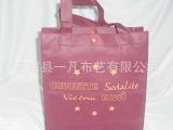 专业厂家生产批发压线工艺袋口塑料扣工艺无纺布手拎袋
