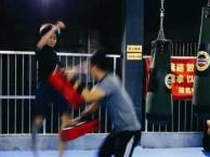 虎啸武道搏击馆-培训 散打 搏击 武术 女子防身术