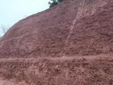 日本高次团粒SF绿化喷播技术专用土壤团粒剂厂家直销