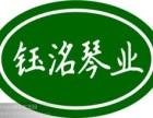 高新区历下区专业古筝琵琶老师培训招生