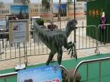 厦门节假日必备活动会动会叫的恐龙展