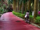 生态透水地坪道路 彩色透水混凝土 彩色露骨料混凝土