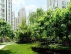 新天地核心地段 翠湖天地雅苑 高端住宅区后排豪华装修2室租房