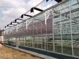 玻璃大棚造價 玻璃溫室工程設計