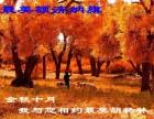 额济纳旗/张掖/嘉峪关/敦煌旅游