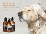 伊索IASUO宠物香波厂家欢迎全国代理商,经销商,宠物店咨询