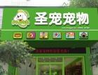 圣宠宠物店(梅州丰顺政锦花园店)宠物服务的专家