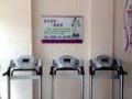 转让全新韩式甩脂机、懒人减肥仪器