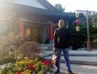 潍坊最准的算命大师,潍办公室旺财风水,潍坊算姻缘最准的地方