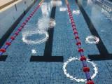 廣州荔灣區水上樂園健身房游泳池拆裝游泳池拼接游泳池廠家.