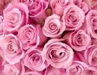 宁波玫瑰皇后加盟 玫瑰皇后加盟费用 玫瑰皇后加盟怎么样