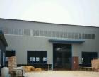 山东红太阳酒厂向南500 厂房 1500平米