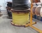 欢迎咨询 湖州电缆线回收价格