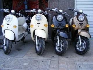 真虎各款式自行车,电动车出租,汽车租赁