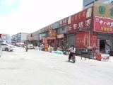 建设北街 新华区国富中心市 1室 1厅 80平米 整租新华区国富中心市