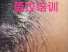 韩国蛋饺Dr.J半永久培训 新研发之独门技术头顶自然生发!