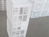 塑料运输蛋筐 种蛋运输筐 带隔板鸡蛋筐