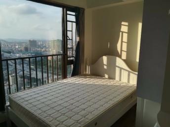 龙华民治 星河传奇 5室 2厅 128平米 豪华装修星河传奇