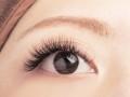 全球唯一一款畅销28个国家的奢侈品睫毛BIOMOOI山茶花