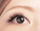 全球**一款畅销28个国家的奢侈品睫毛BIOMOOI山茶花