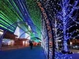 孝感灯光秀设计安装灯光造型灯光长廊出售设计安装