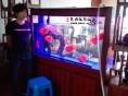 鱼缸造景清洗鱼缸水族服务海水缸维护器材更新